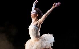 В Екатеринбурге стартовала «Dance-платформа»
