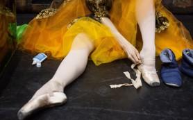 Школа русского балета в Индии начала набор учеников