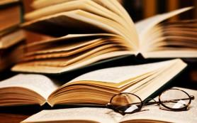 В Петербурге откроются «Рождественские книжные аллеи»