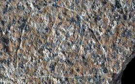 В Испании нашли «Пикассо каменного века»