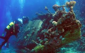 Сергей Мокрицкий снимет фильм про секретную подводную экспедицию