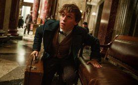 Нюхлер, Взрывопотам и Парящее зло: все о волшебных существах из вселенной Гарри Поттера