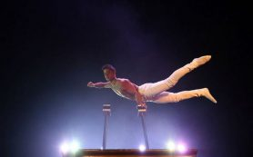 Артисты московского цирка Никулина завоевали золотую награду на Международном фестивале
