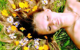 Преимущества травяных средств против выпадения волос