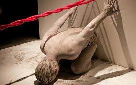 Венская опера объявила свои планы на предстоящий сезон