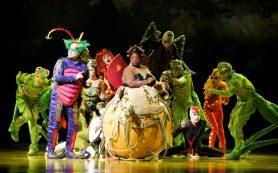 «Цирк дю Солей» привез в Россию новое летнее шоу