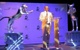 В ЮАР подвели итоги кинофестиваля «Быстрый лев»