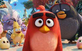 Птиц по осени считают: Angry Birds 2 снова в лидерах проката