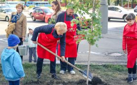 РГДБ отпраздновала 50-летие высадкой кленовой аллеи