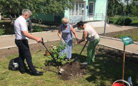 Музею Гагарина назначили нового директора