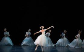 В «Стасике» состоялась премьера балета: при его постановке снимают директора